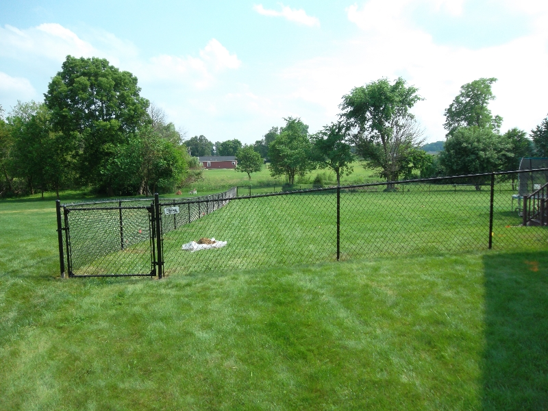 Residential Vinyl Chain Link Fencing32